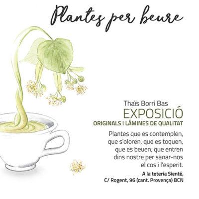 Plantes per beure