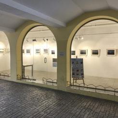 Exposición Revelaciones