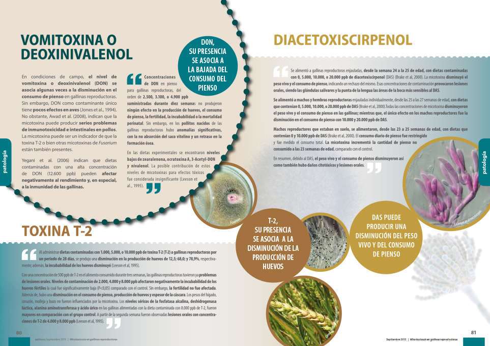 Revista ganadería