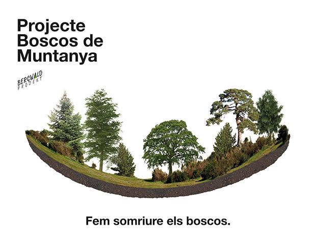 Campaña de voluntariado forestal